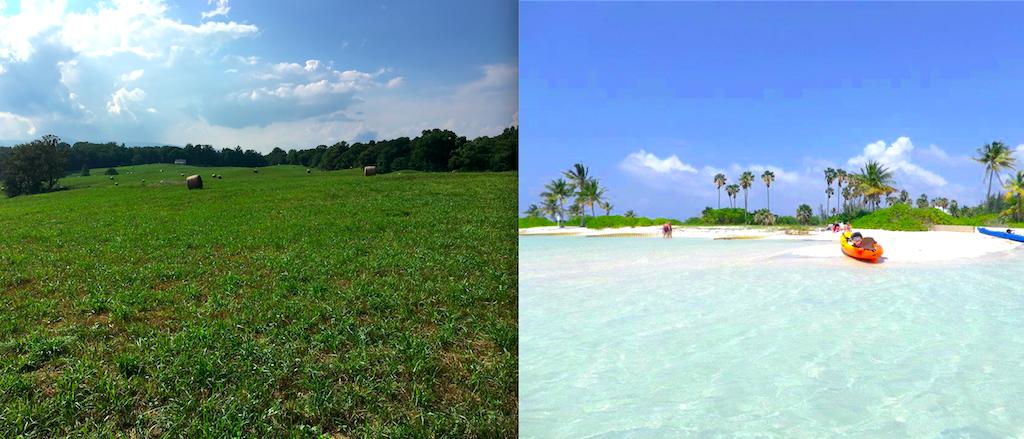 northern-va-and-cayman-islands