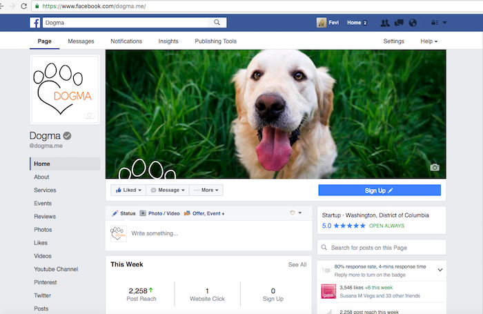 New Facebook Pages Layout