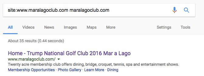 Google's Site Search Operator