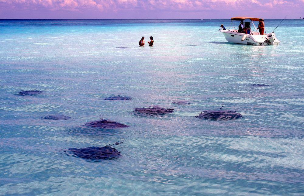 Cayman Islands SEO