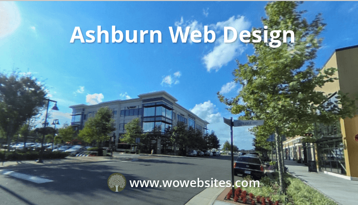 Ashburn VA Web Design