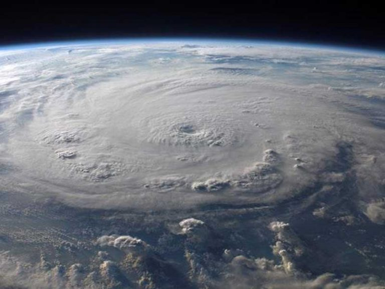 Website Help for Businesses affected by Hurricane Irma