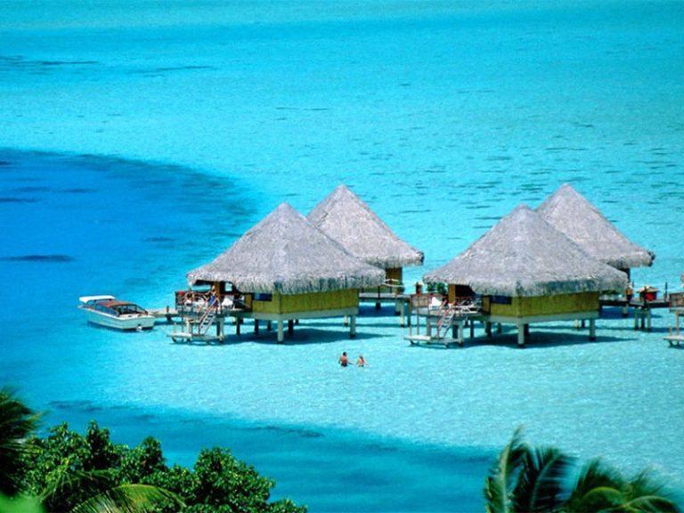 Aruba SEO
