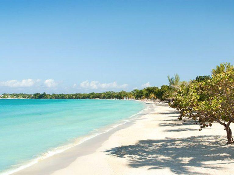 Jamaica SEO