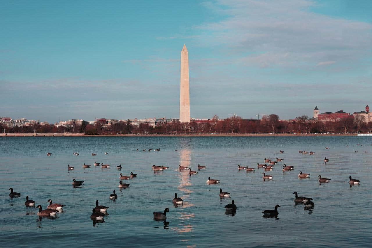 Money-back Guarantee now include Washington DC and Baltimore Web Design