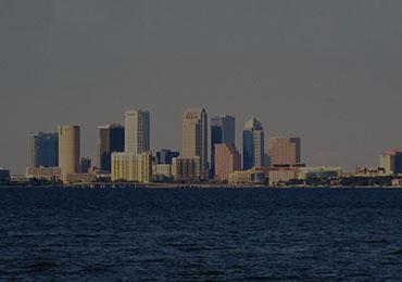 Tampa SEO and Web Design