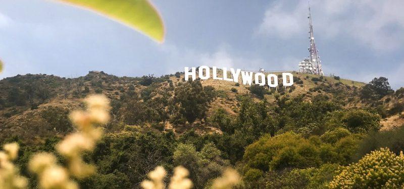 Los Angeles SEO